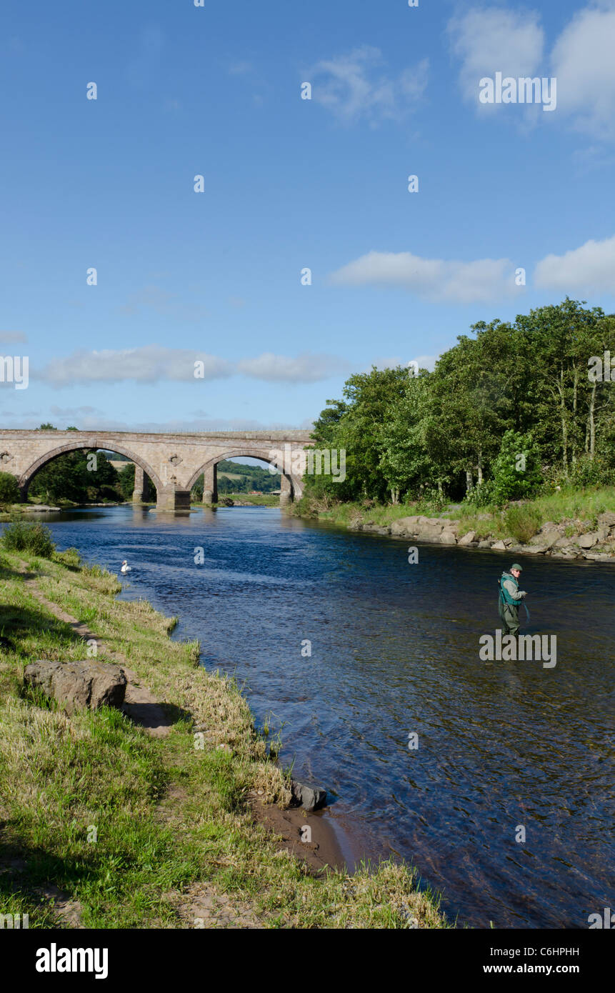 Railway viaduct and road bridge across North River Esk at St Cyrus National Nature Reserve with fly fisherman - - Stock Image