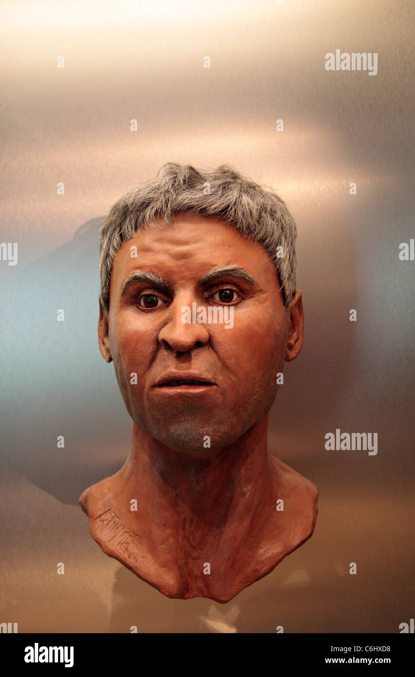 Reconstructed head of a 45 year old man from Aquae Sulis, in The Roman Baths museum, Bath, Somerset, England. - Stock Image