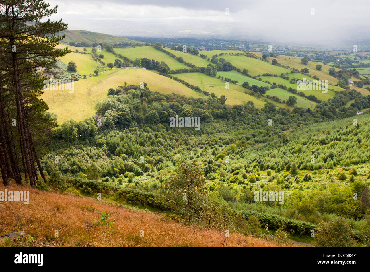 The Vale of Clwyd from the Clwydian hill range on the Offas Dyke path, North Wales. - Stock Image