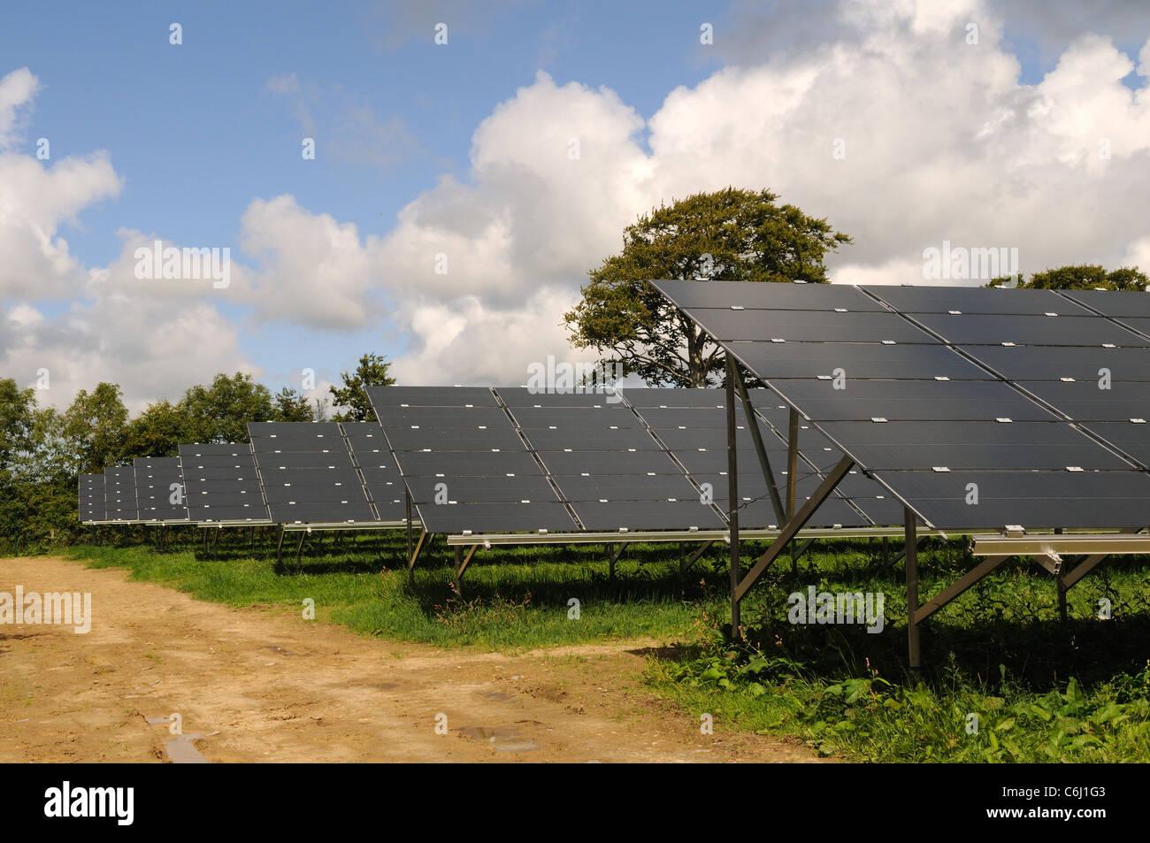 Solar Panel Park at Rhosygilwen nr Cardigan Pembrokeshire Wales Cymru UK GB - Stock Image