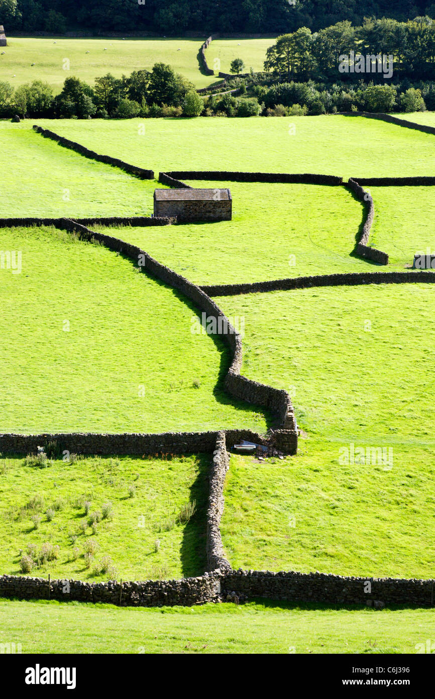 Field Barns at Gunnerside Swaledale Yorkshire Dales England - Stock Image