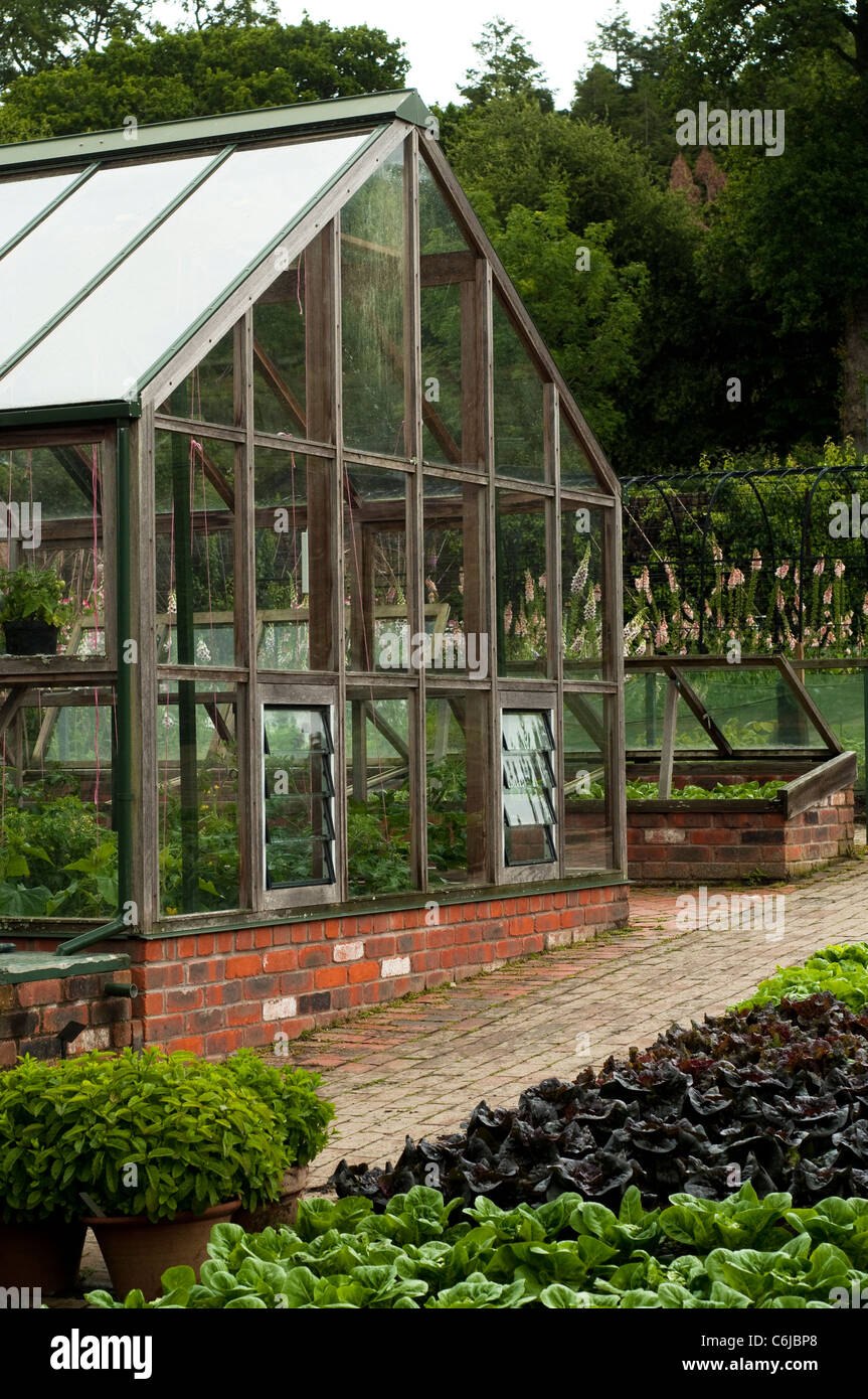 Greenhouse and mixed lettuces in The Fruit and Vegetable Garden in ...