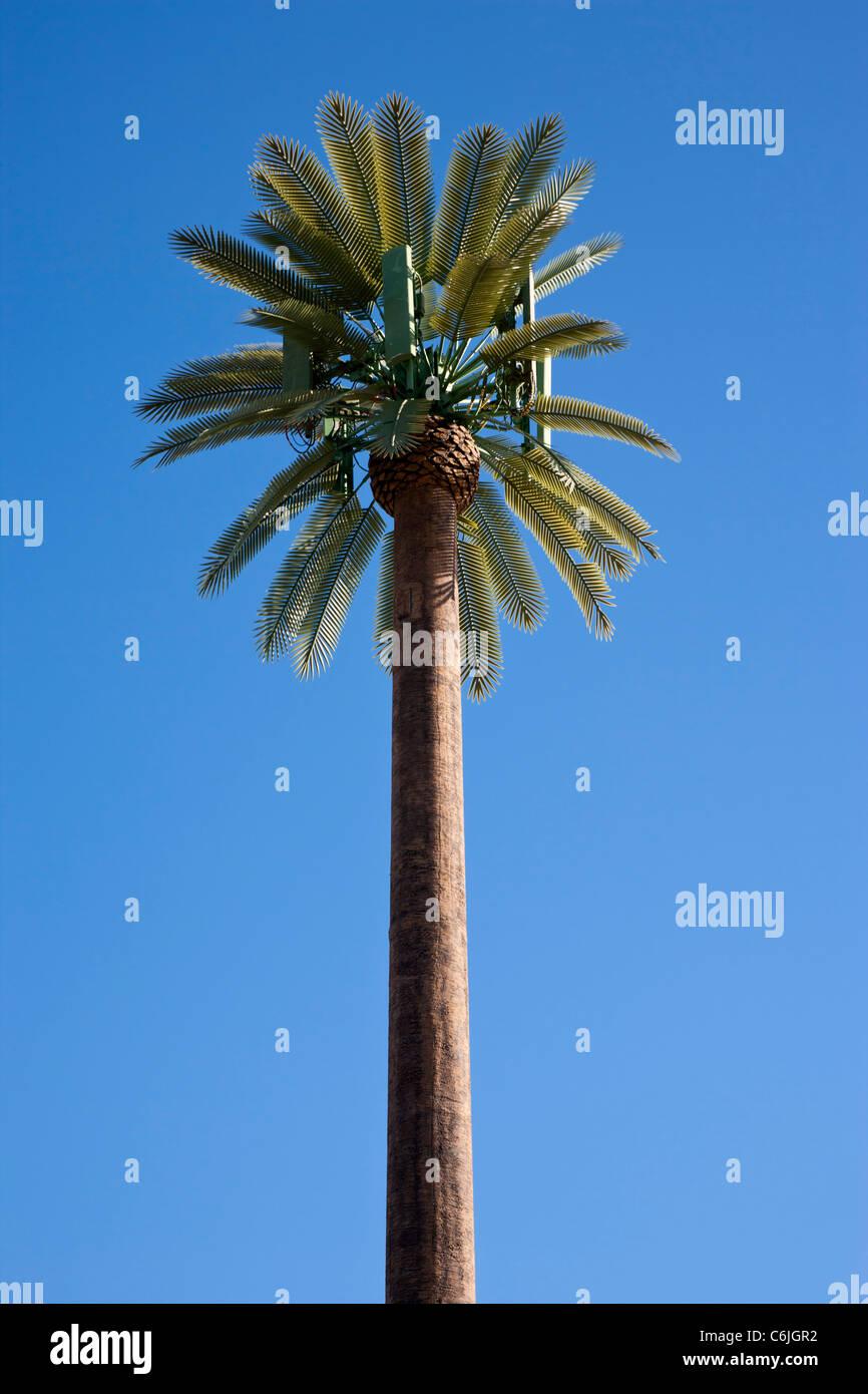 Mobile telecommunications mast disguised as a palm tree, phoenix, arizona, USA - Stock Image