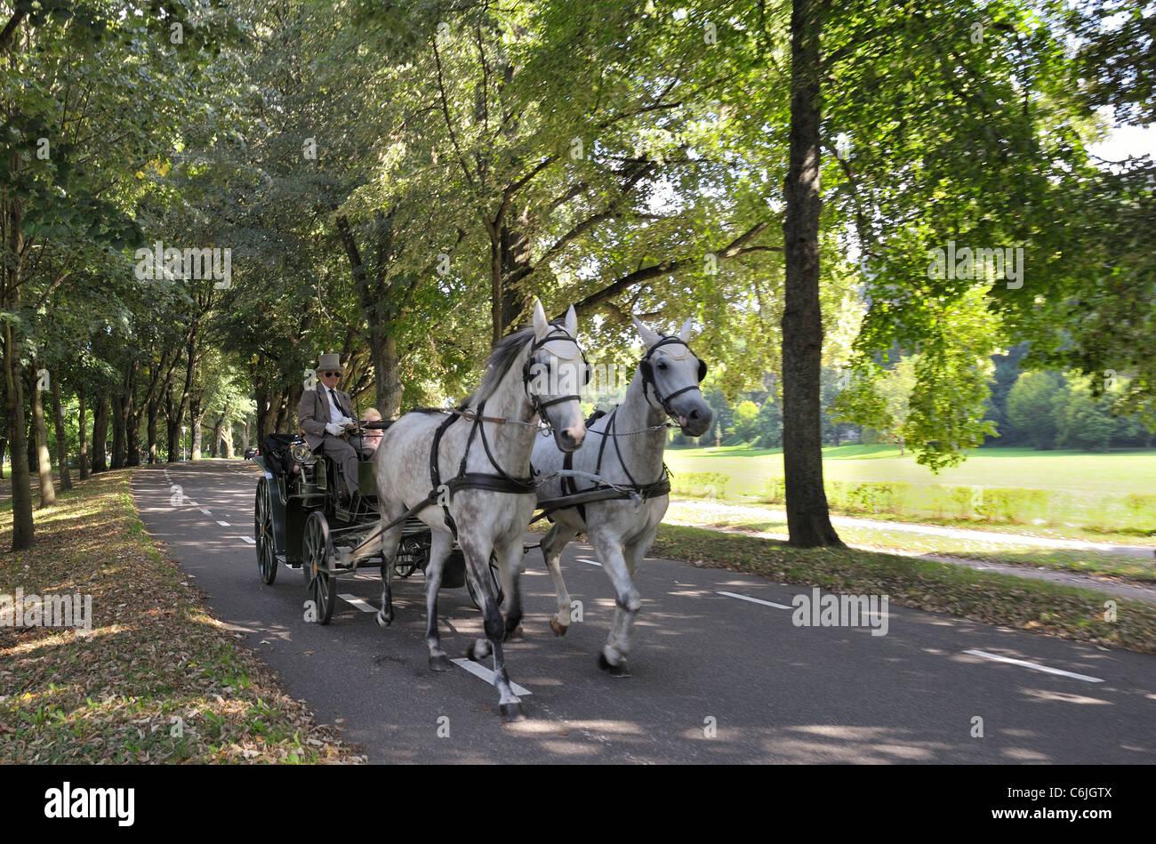 Horsecarriage in the Lichtentaler Allee - Stock Image