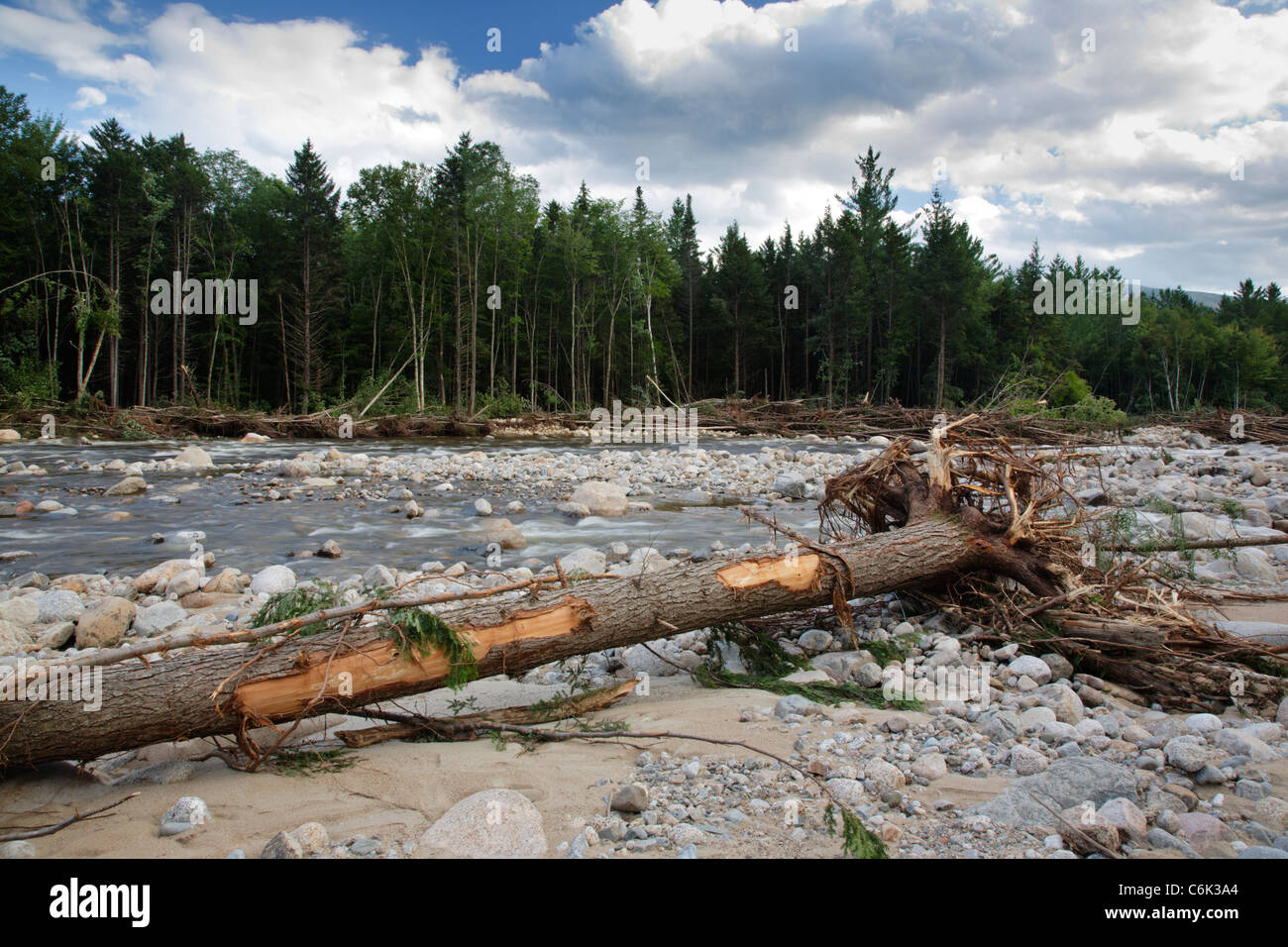 Tropical Storm Irene in in the White Mountains National Forest of New Hampshire  USA - Stock Image