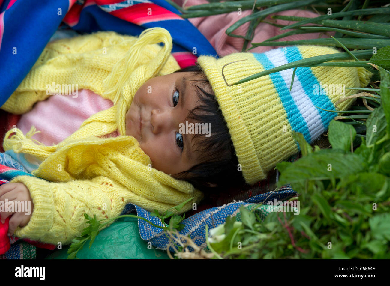 Close-up of a baby lying at a market stall at Sunday market, Pisac, Cuzco, Peru - Stock Image