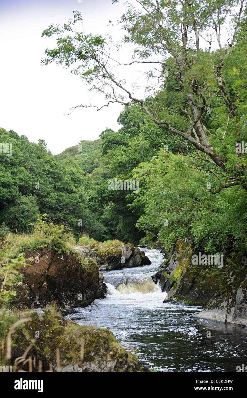 The River Afon Teifi from Cenarth Bridge forming the border between Carmarthenshire and Ceredigion in West Wales Stock Photo