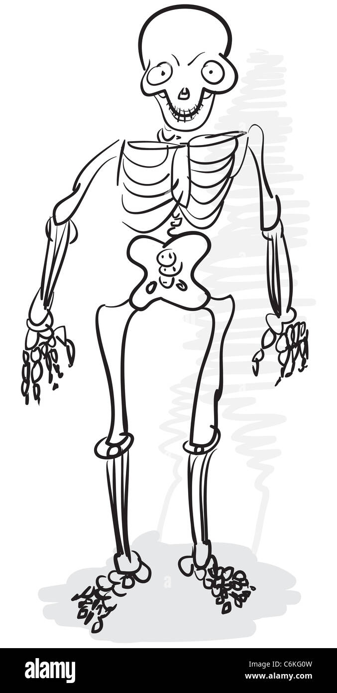 Rough Stylized Monochrome Drawing A Human Skeleton Stock Photo