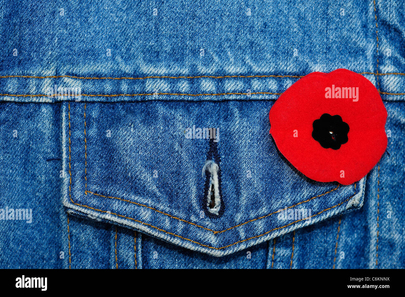 Remembrance Day Poppy Being Worn On A Denim Jacket - Stock Image