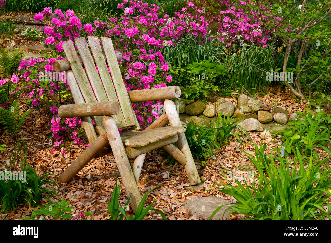 An empty lawn chair with rhododendron flowers in the Stott garden near Goshen, Indiana, USA. - Stock Image