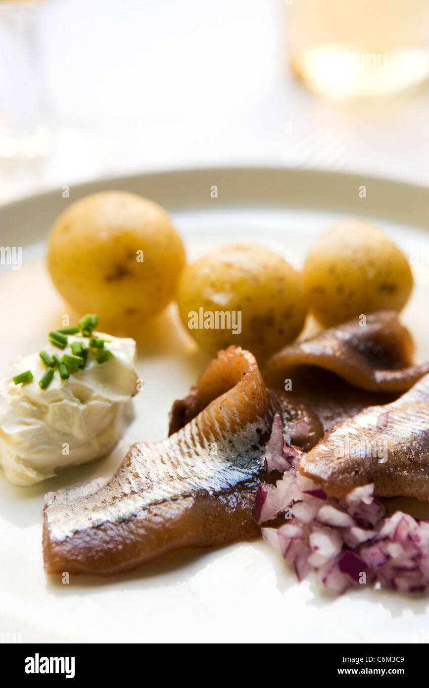 New potatoes with pickled herring and sour cream - Stock Image