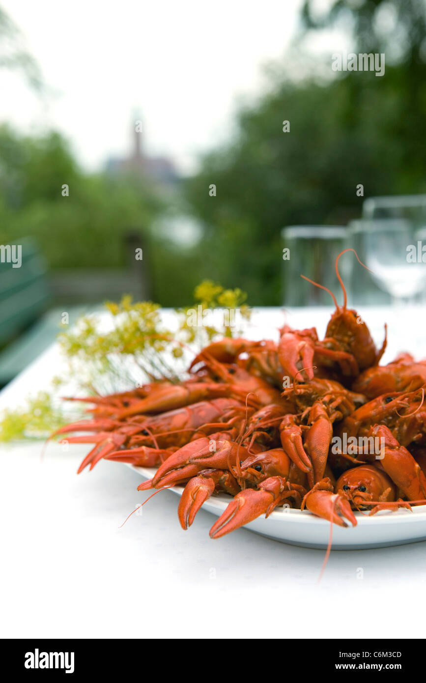 Boiled crawfish on outdoor dinner table - Stock Image