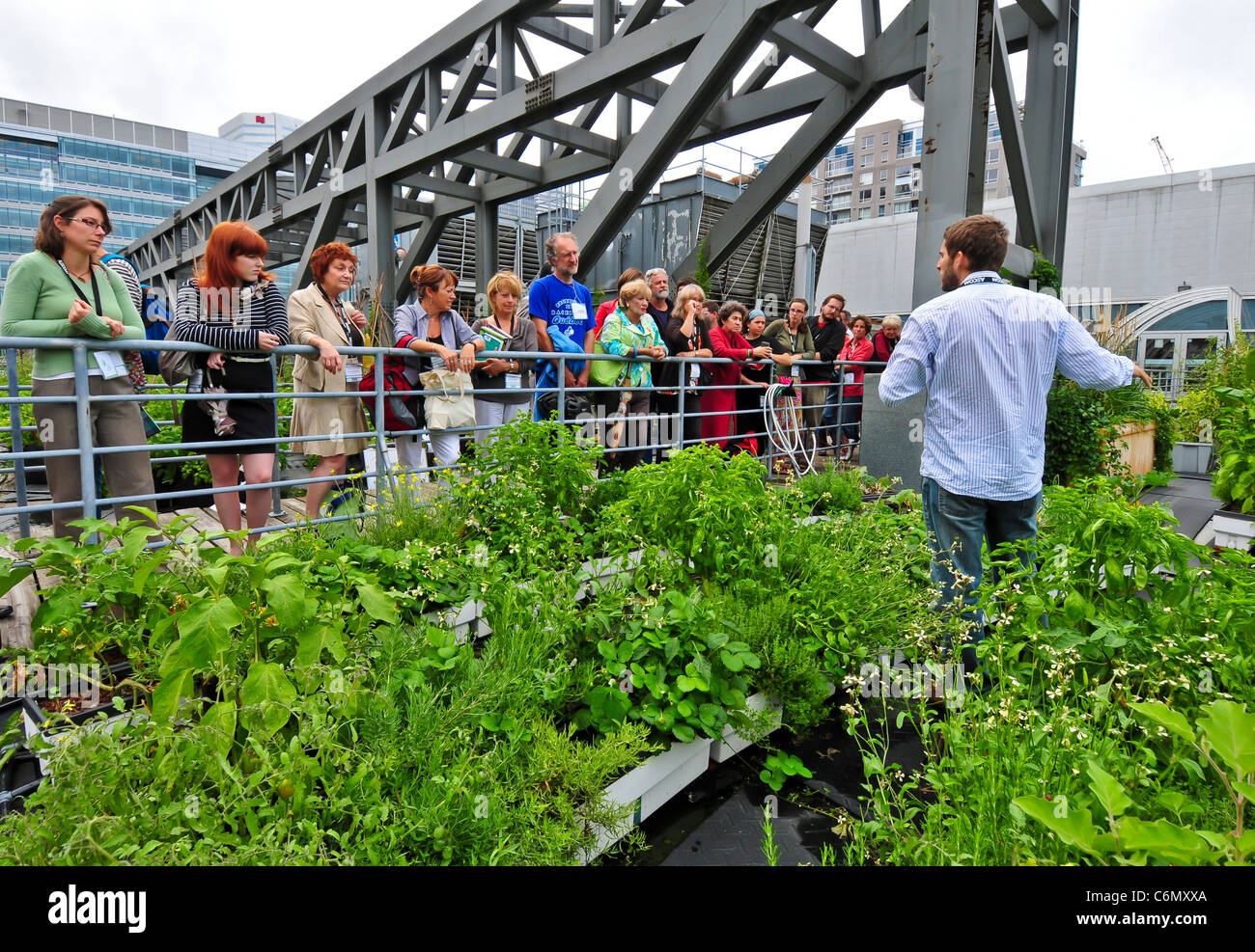 Guided educational tour to explain the benefits of the green rooftops on the green roof of Palais des Congres Montreal - Stock Image