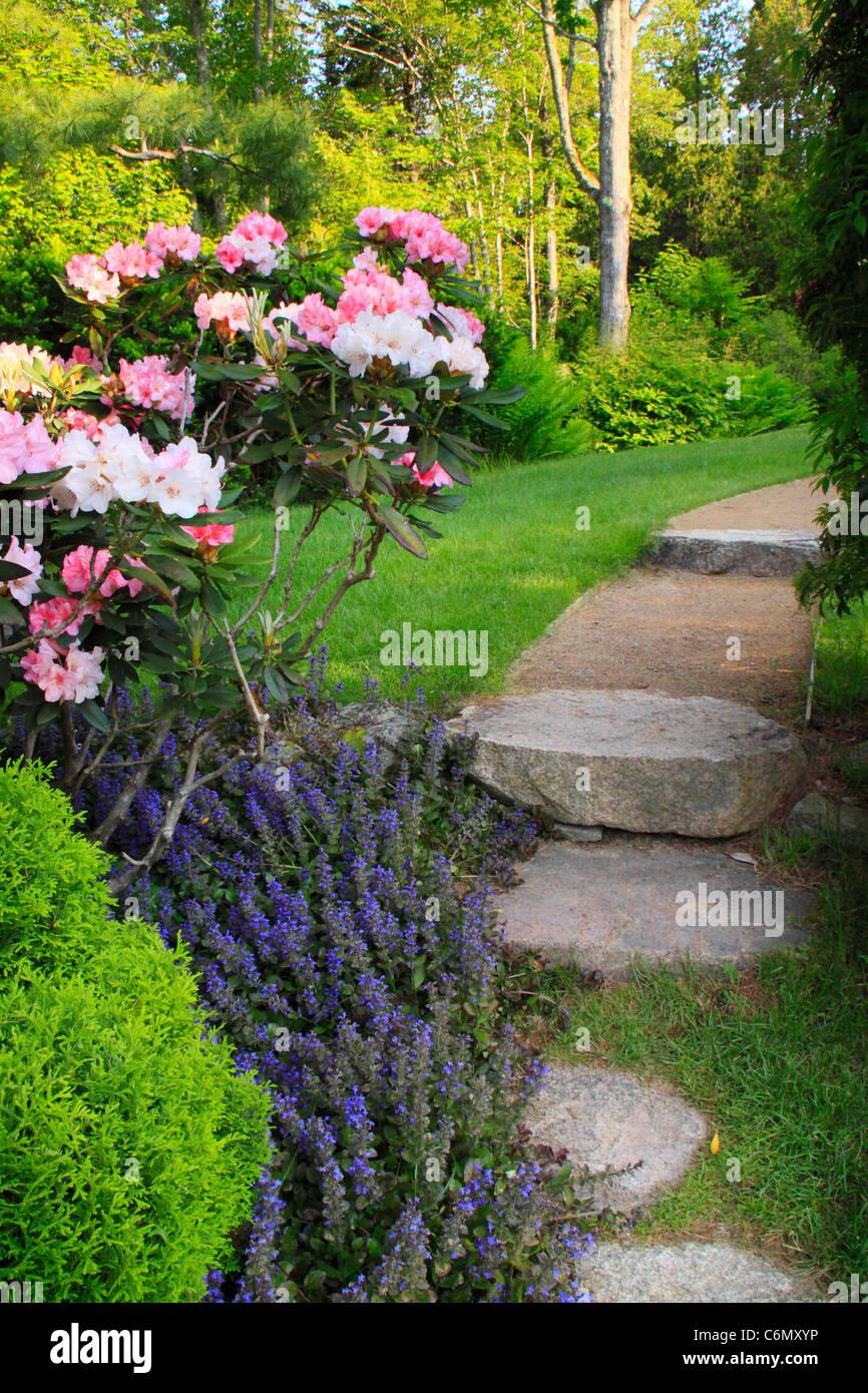 Thuya Gardens, Northeast Harbor, Mount Desert Island, Maine, USA Stock Photo