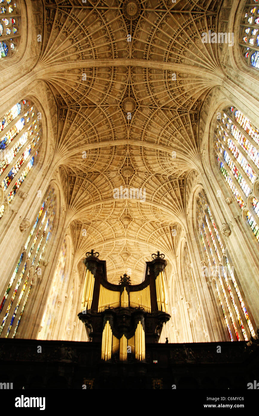 View from below of the fan vaulted ceiling and organ at King's Chapel, Cambridge University - Stock Image