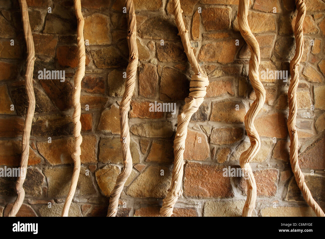 Twisted ropes hanging against a stone wall - Stock Image