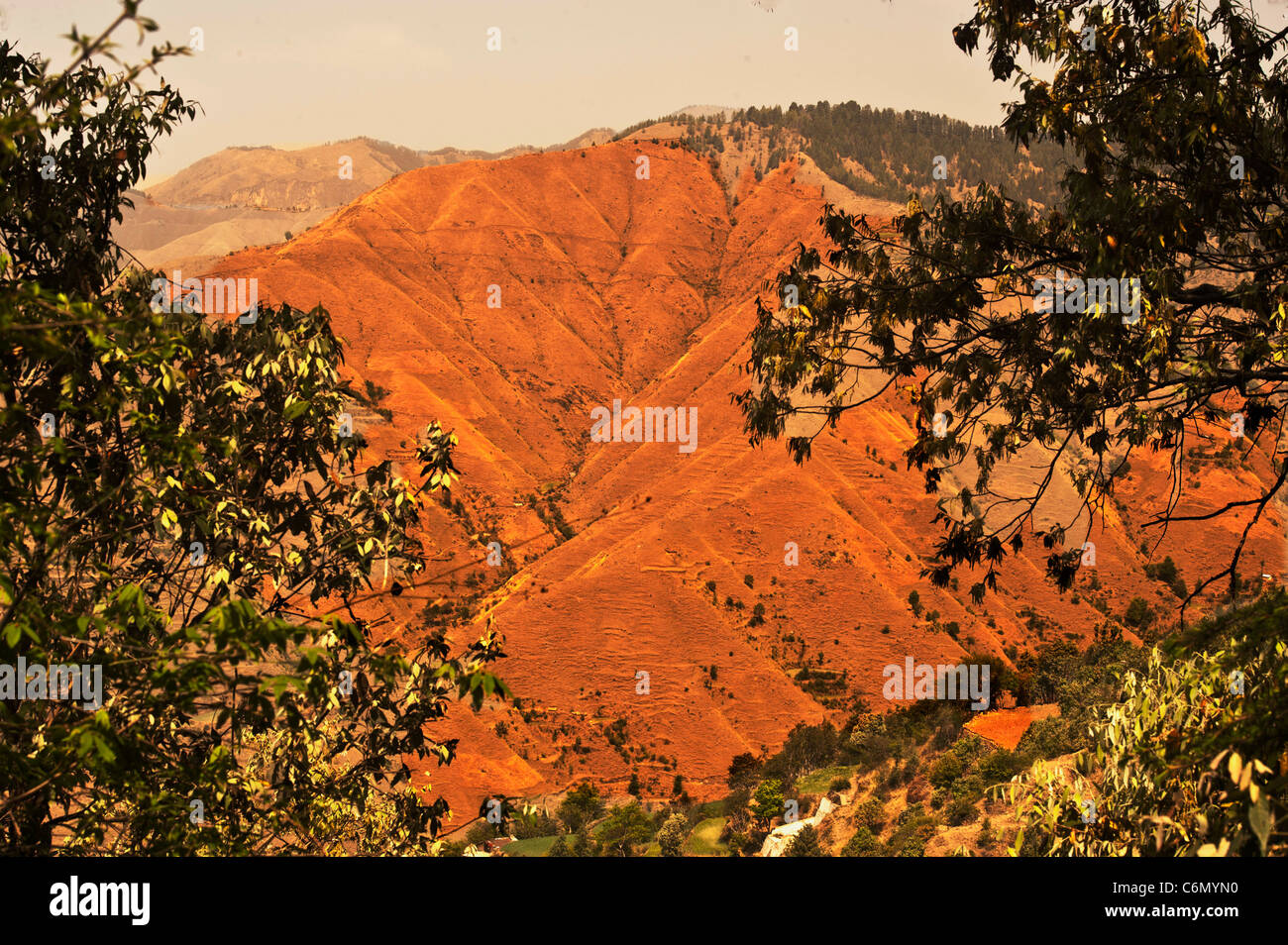 Ecological disaster on the Himalayas-Denudation of forest cover at the surrounding areas near Chakrata-Uttarakhand - Stock Image