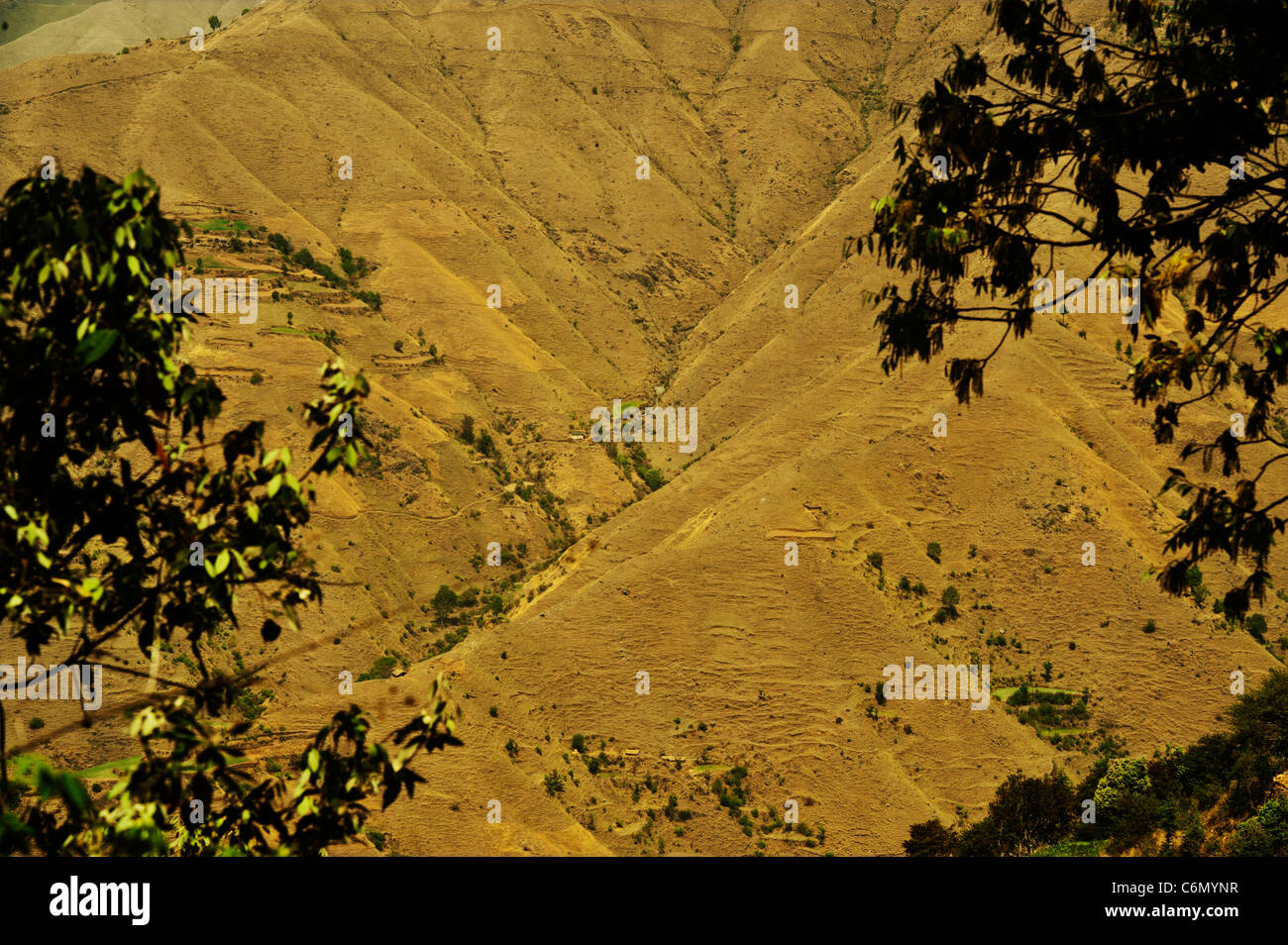 Ecological disaster on the Himalayas-Denudation of forest. - Stock Image