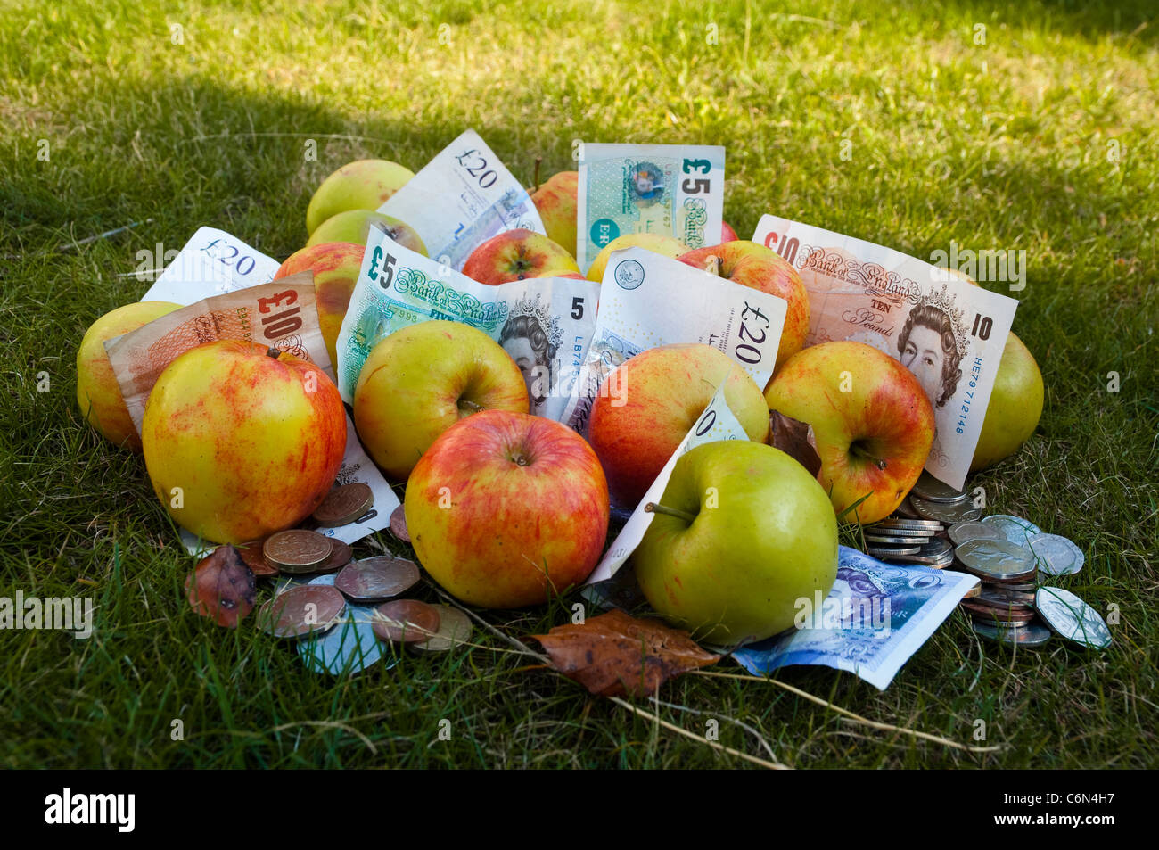A windfall, money and apples  - unexpectedly in the money, with a cash bonus - to spend, save or invest. UK - Stock Image