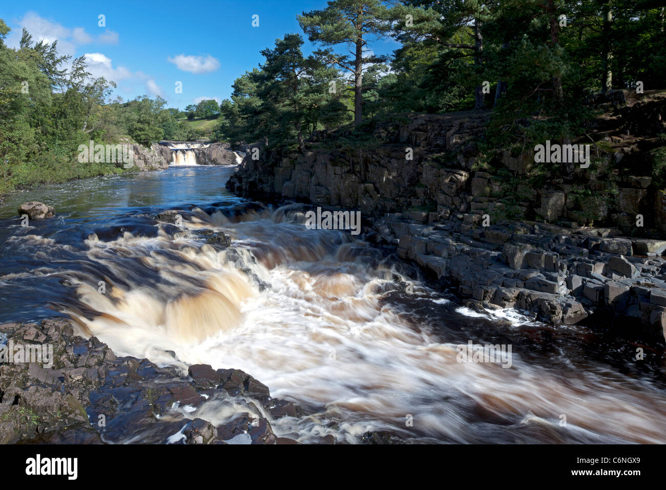 Gushing water over Low Force Waterfall, near Middleton in Teesdale, County Durham - Stock Image