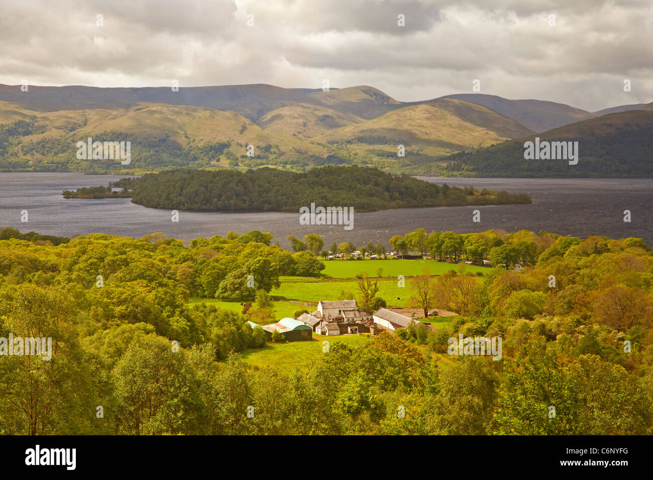 Cashel Farm, Cashel Campsite and the island of Inchlonaing in Loch Lomond. The Luss Hills are in the background. - Stock Image