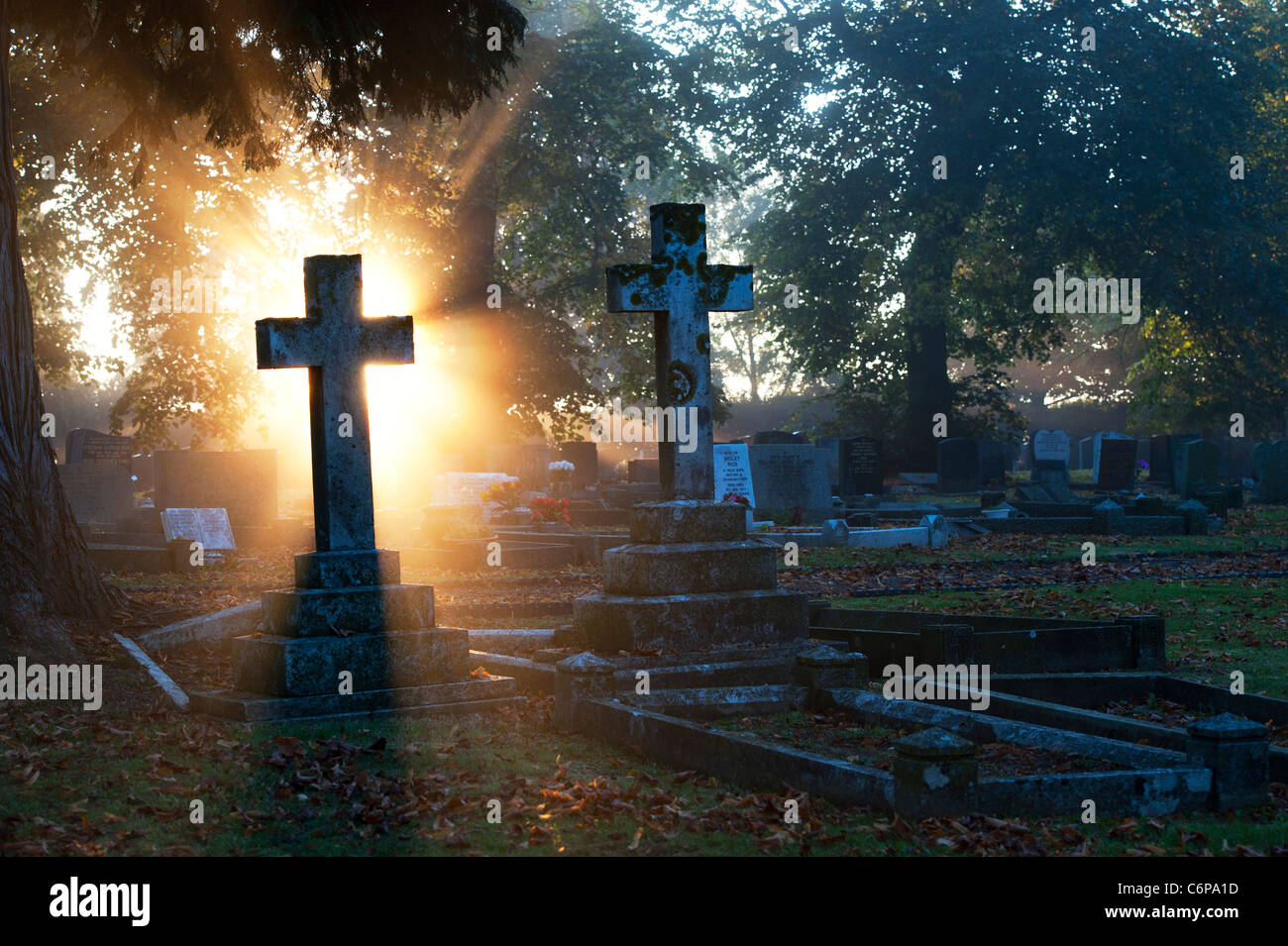 Cemetery Cross headstones lit up in the early morning sunlight through mist. England - Stock Image