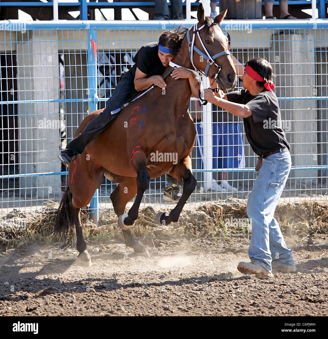 Indian Relay Horse Race Held During The Annual Shoshone