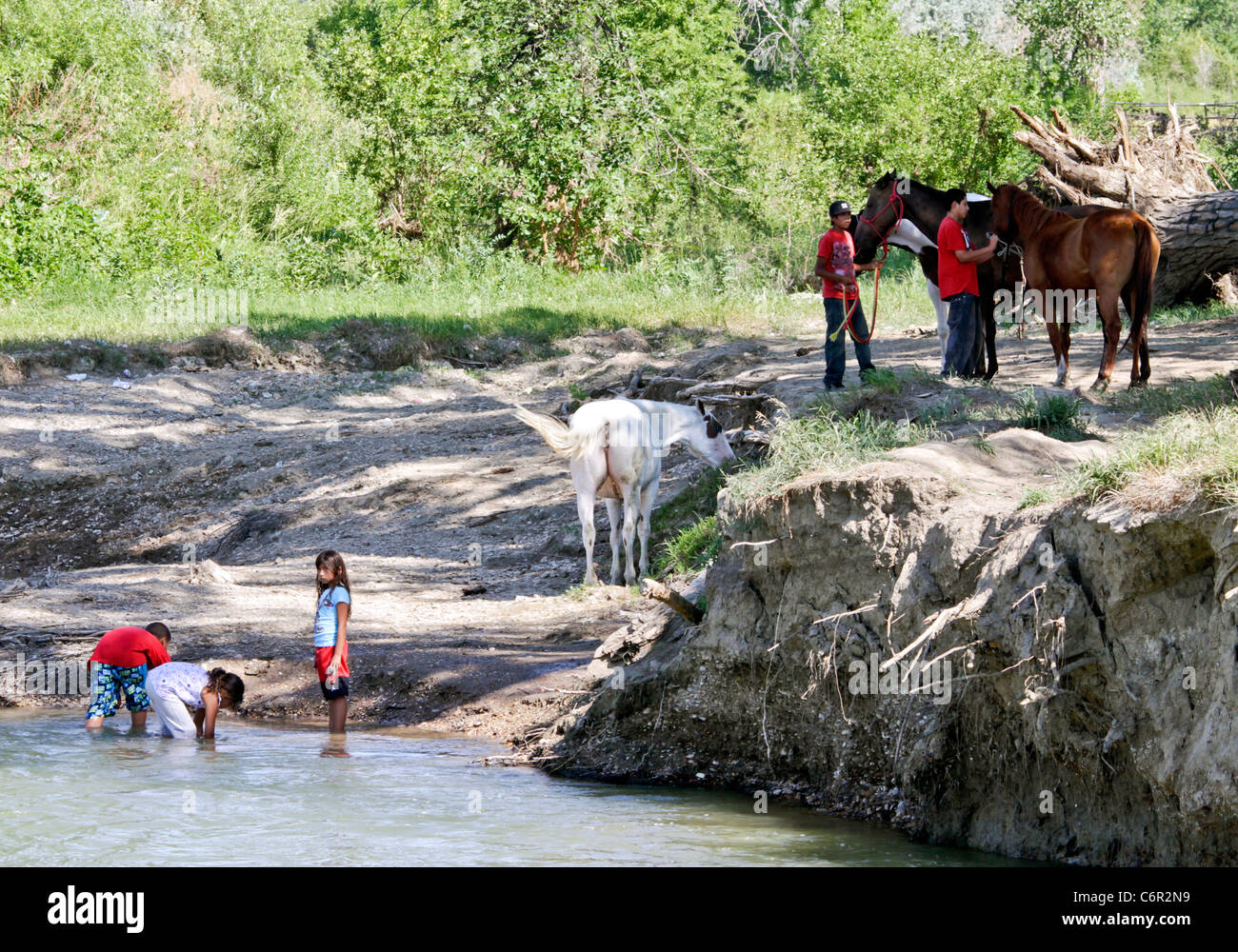 Young Native Americans Crows playing in the Little Big Horn River and tending to Horses at the Crow Agency Reservation, - Stock Image