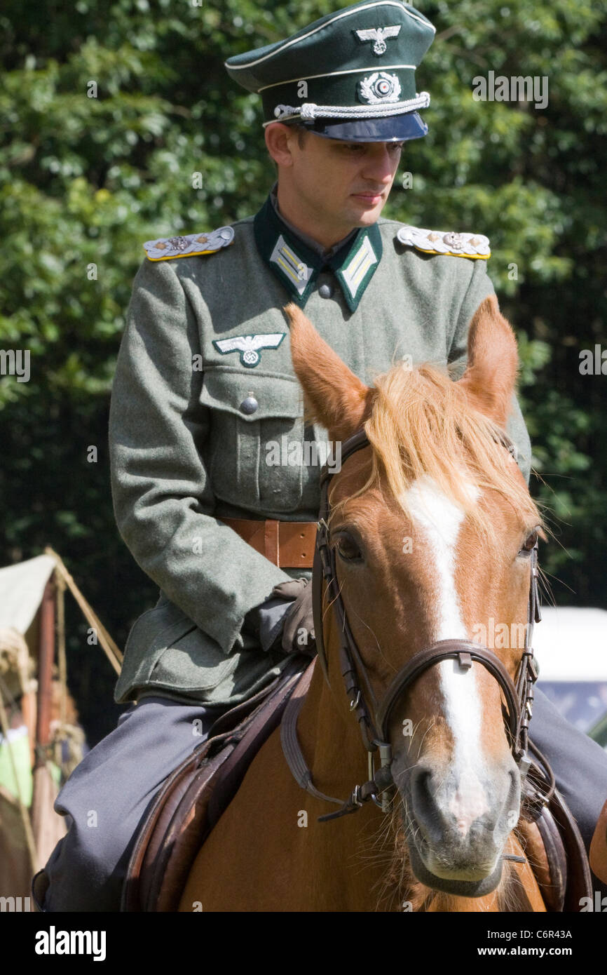 Captain of the SS Cavalry Brigade on a Chestnut Horse at a reenactment Equus ferus caballus Stock Photo