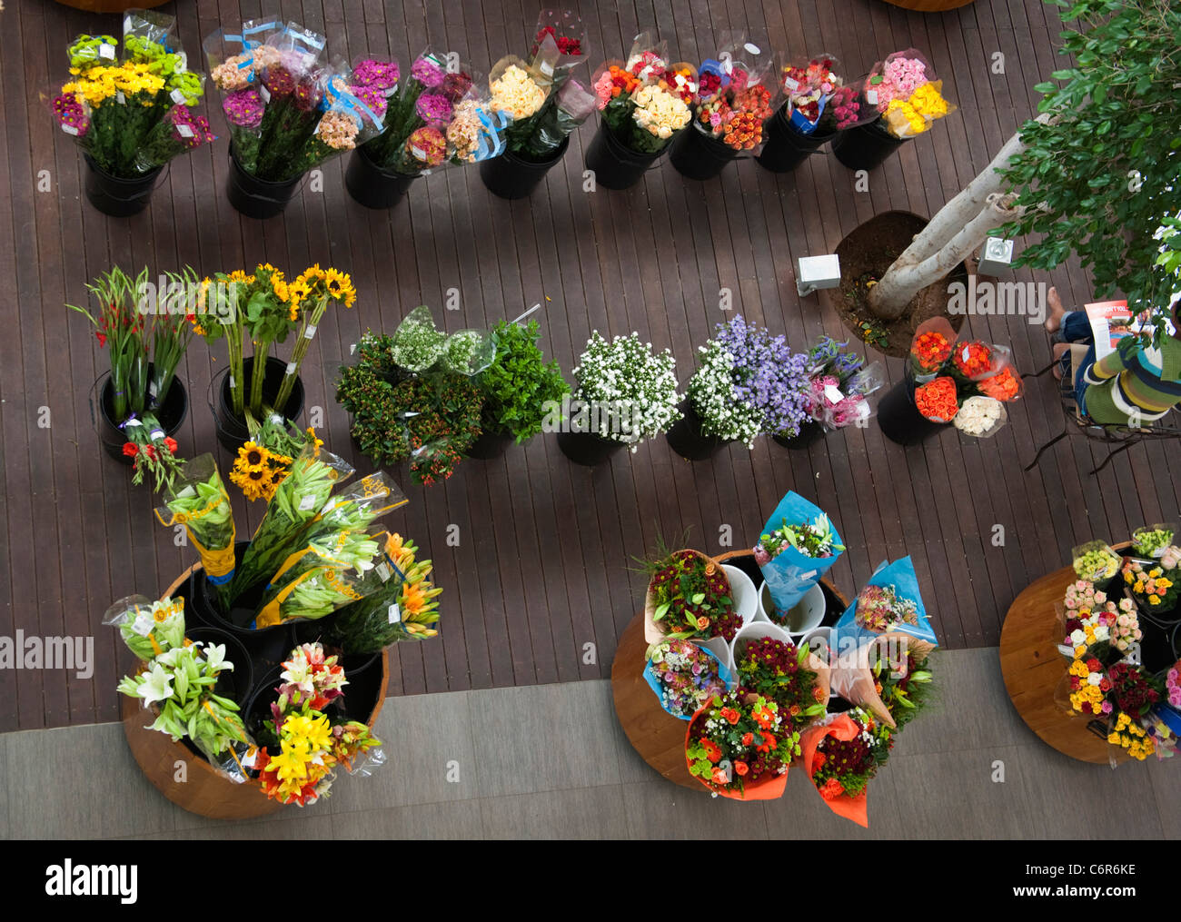 Overhead view of a cut flower stall in a Morningside, Sandton Shopping mall - Stock Image