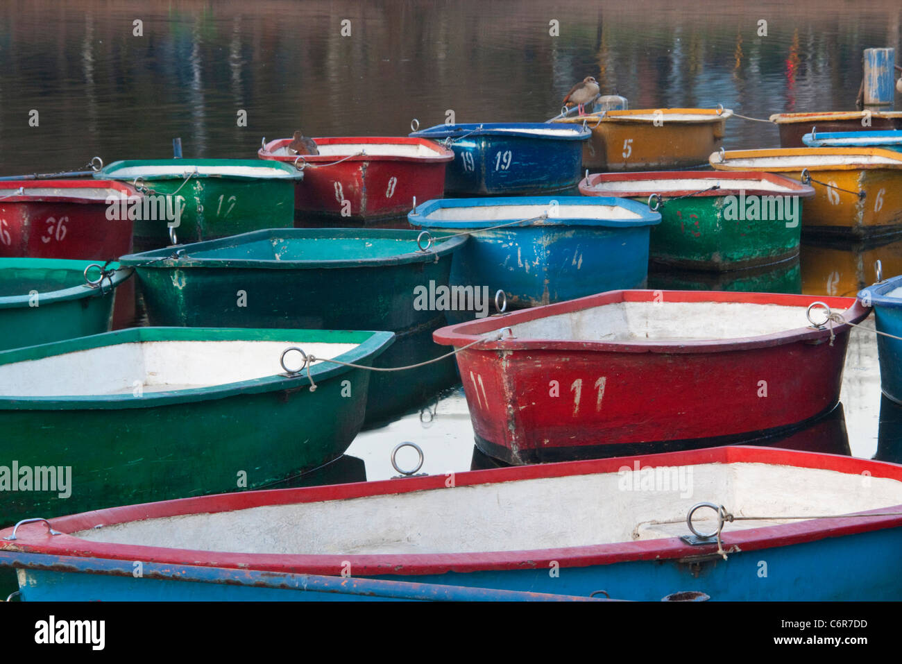 Colourful boats tied up together on a lake - Stock Image