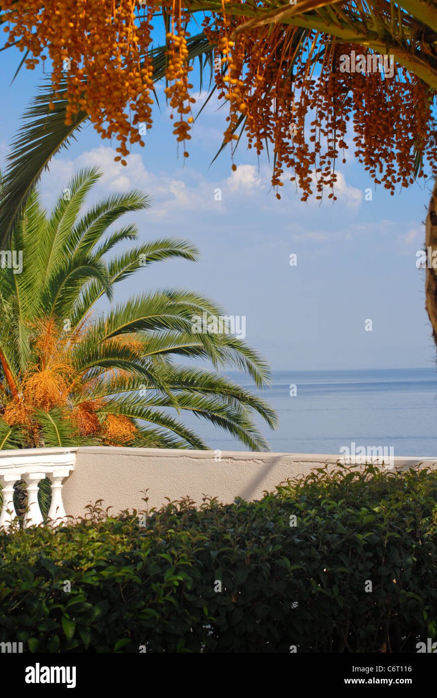 Luxurious holiday view of the  Mediterranean from a Greek island hotel through lush Palm trees onto a blue sea and - Stock Image