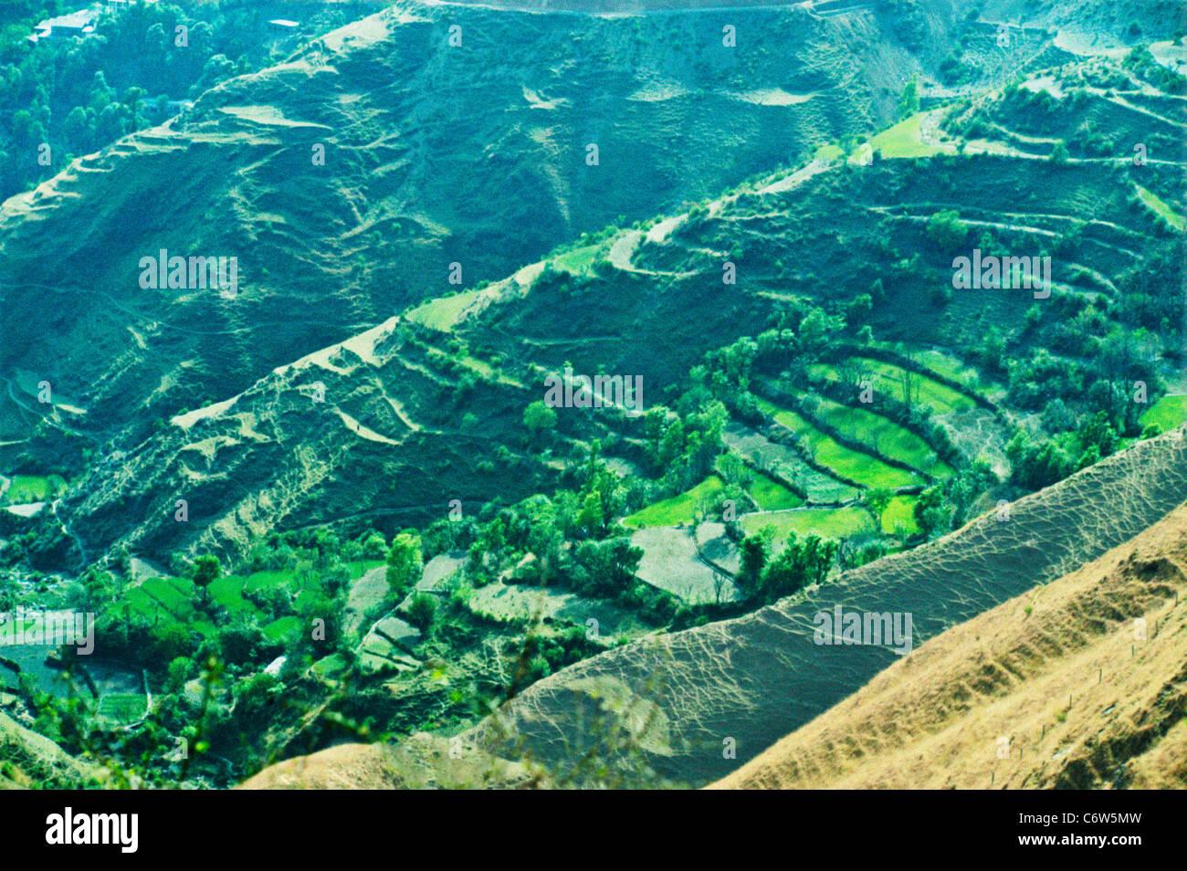Deforestation India Stock Photo