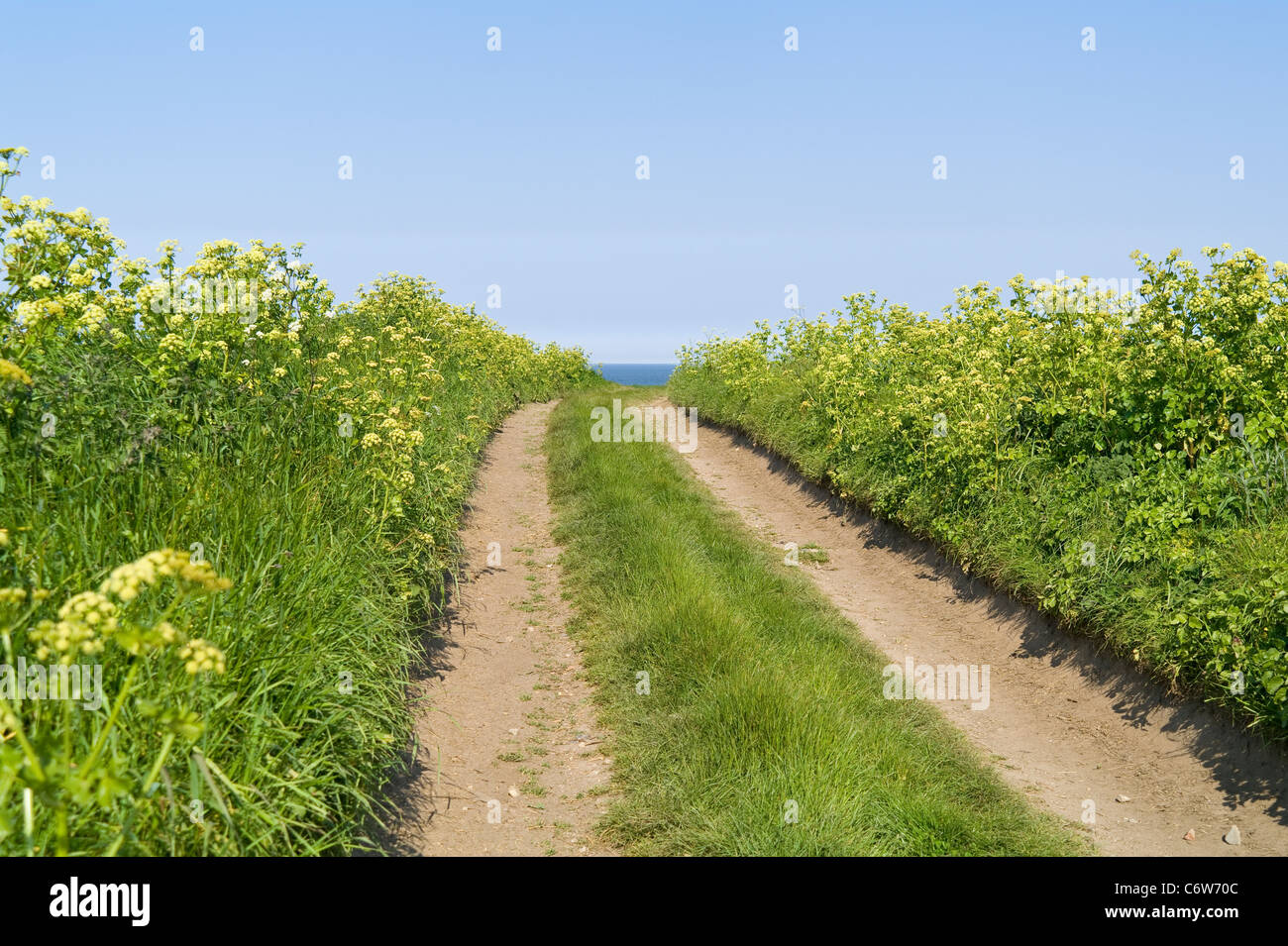 Farm Track Leading to View of Sea and Sky - Stock Image