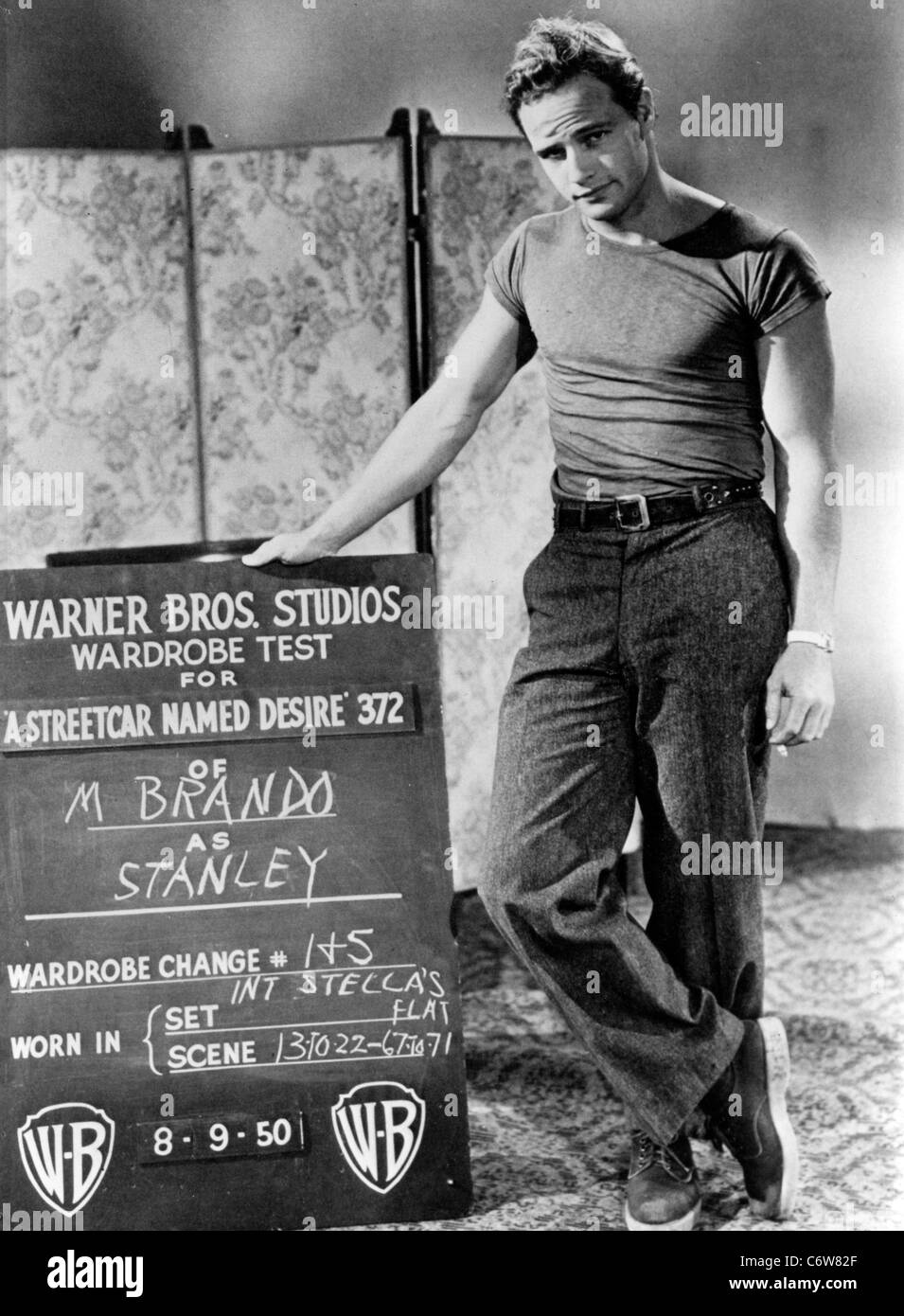 a streetcar named desire stanley character profile