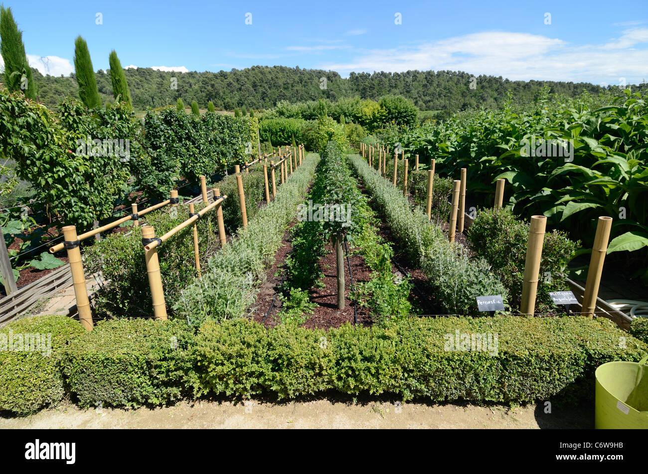 Kitchen Garden or Vegetable & Fruit Garden, Val Joannis Gardens Pertuis Luberon Provence France - Stock Image