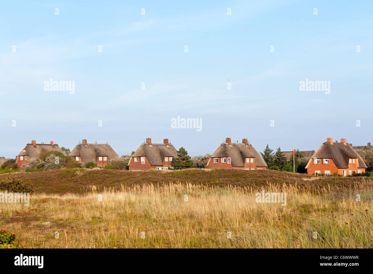 thatched houses in List, Sylt Island, Schleswig-Holstein, Germany - Stock Image