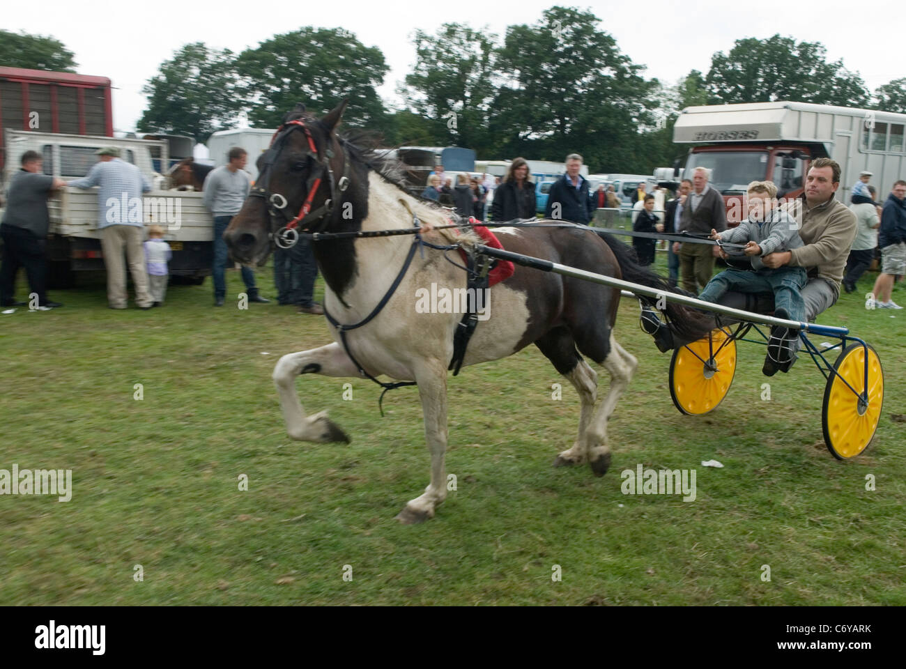 Barnet Gypsy Horse Fair Hertfordshire UK. Father and son showing a trotting pony thats for sale. - Stock Image
