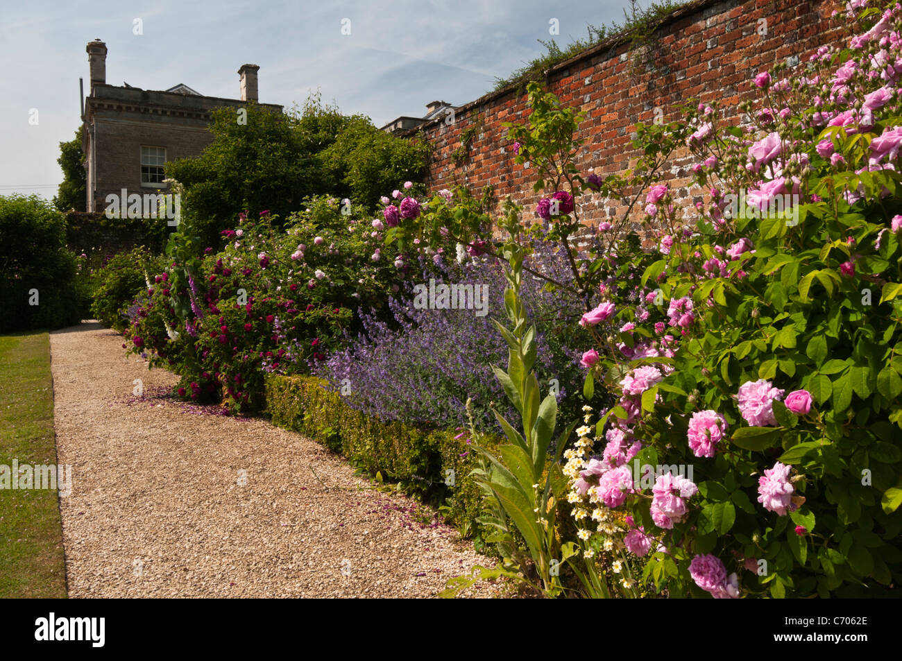 A glimpse of Rousham House seen from within the walled garden beside a colourful herbaceous border, Oxfordshire, - Stock Image