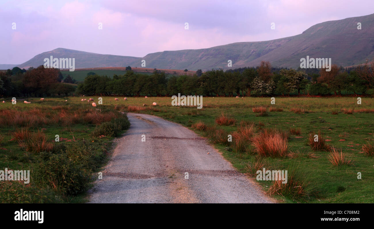 Rhos Fach Common at Dusk with the ridgeline of the Black mountains in the background, Powys, Wales, Europe - Stock Image