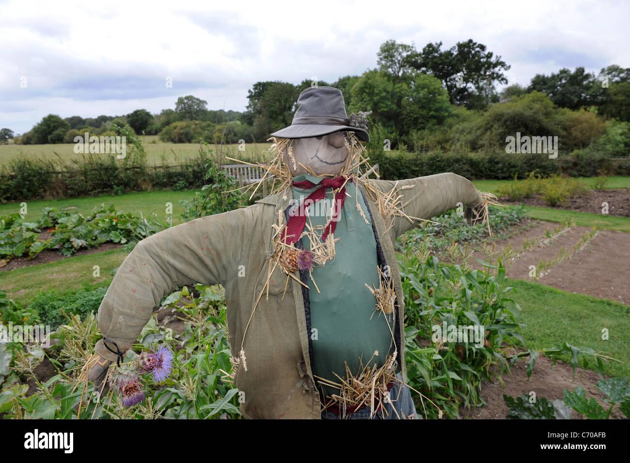 Garden scarecrow England Uk - Stock Image