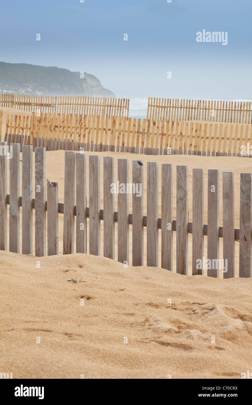 Wooden fences on beach - Stock Image