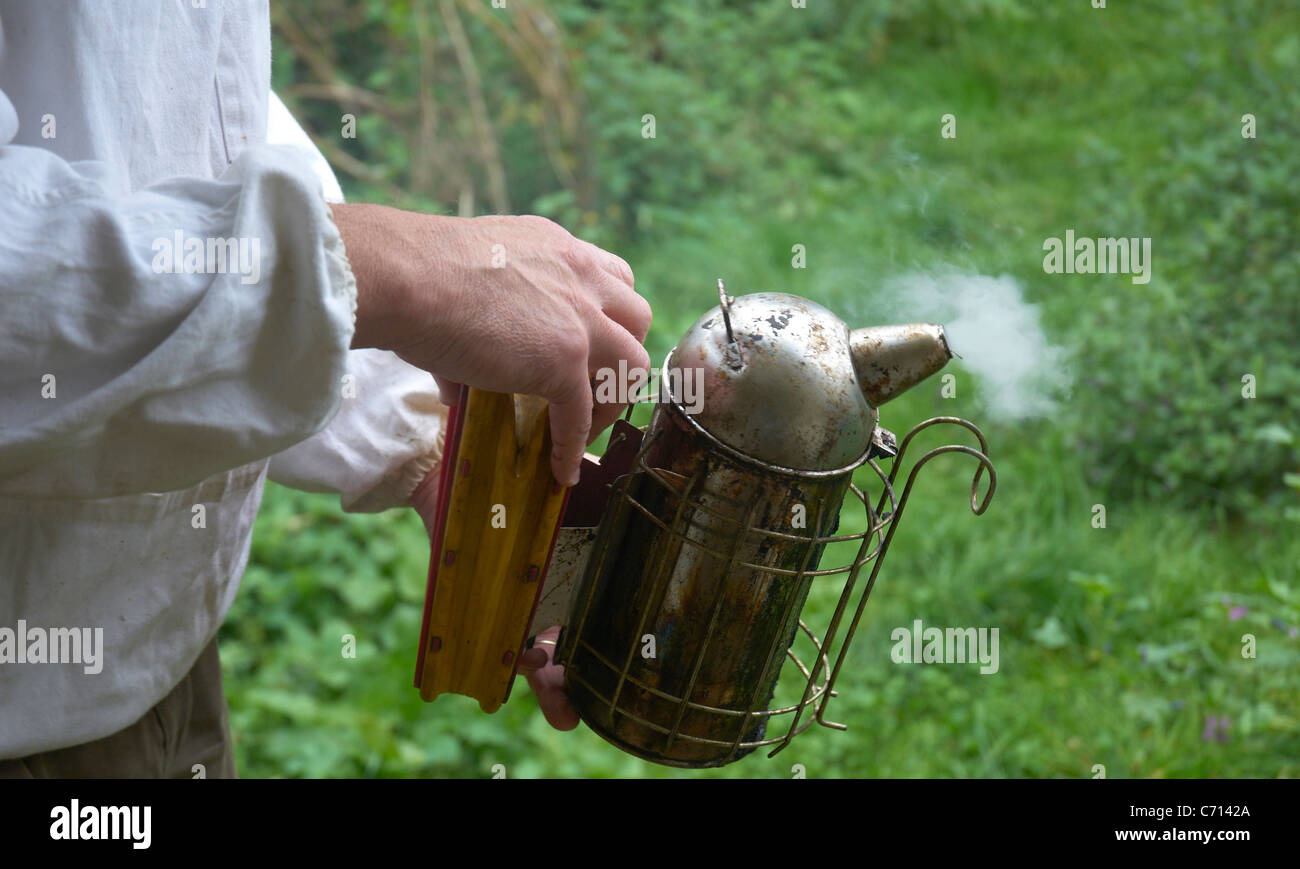 Beekeeper testing out the smoker before use - Stock Image