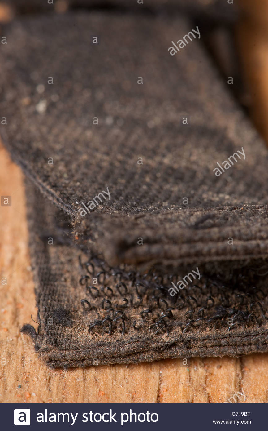 velcro hook and loop fastener fasteners africa af - Stock Image