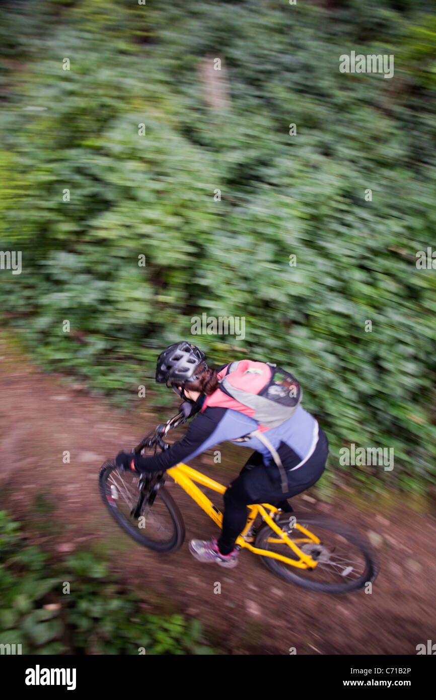 A woman winds through a single track mountain bike trail. - Stock Image