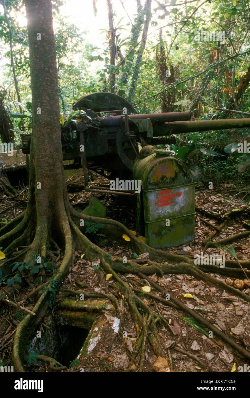 Japanese AA gun on Sokehs Ridge overlooking Kolonia, Pohnpei, FSM, in Stock  Photo - Alamy