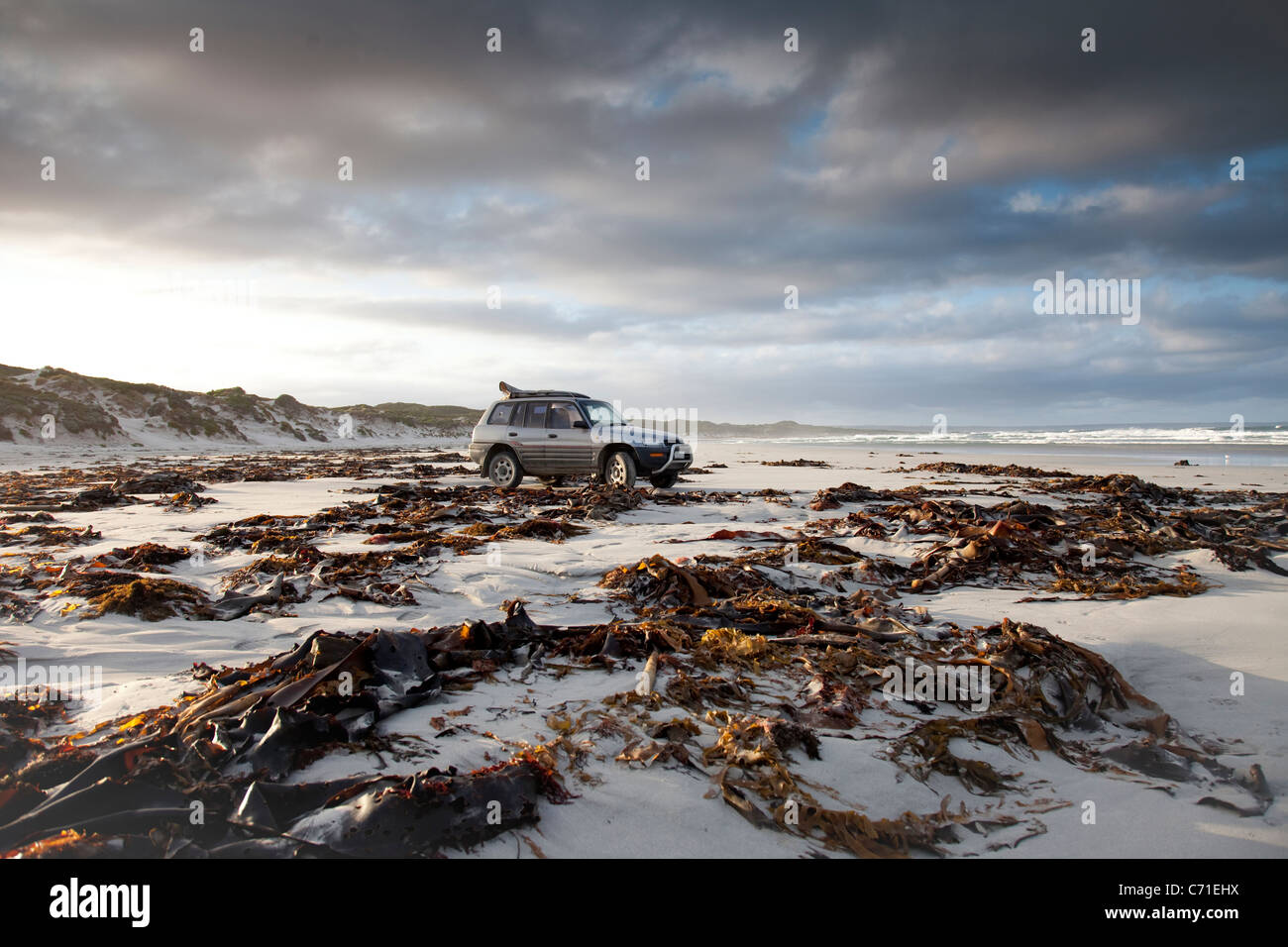 A surfer parked on the beach, getting ready for a surf at British Admiral beach, on King Island, Australia - Stock Image