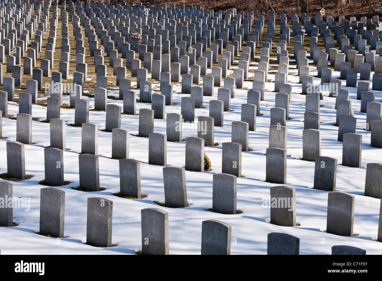 Row on Row. In Bayview Cemetery's military section grey granite headstones mark the graves of Canada's war dead. Stock Photo