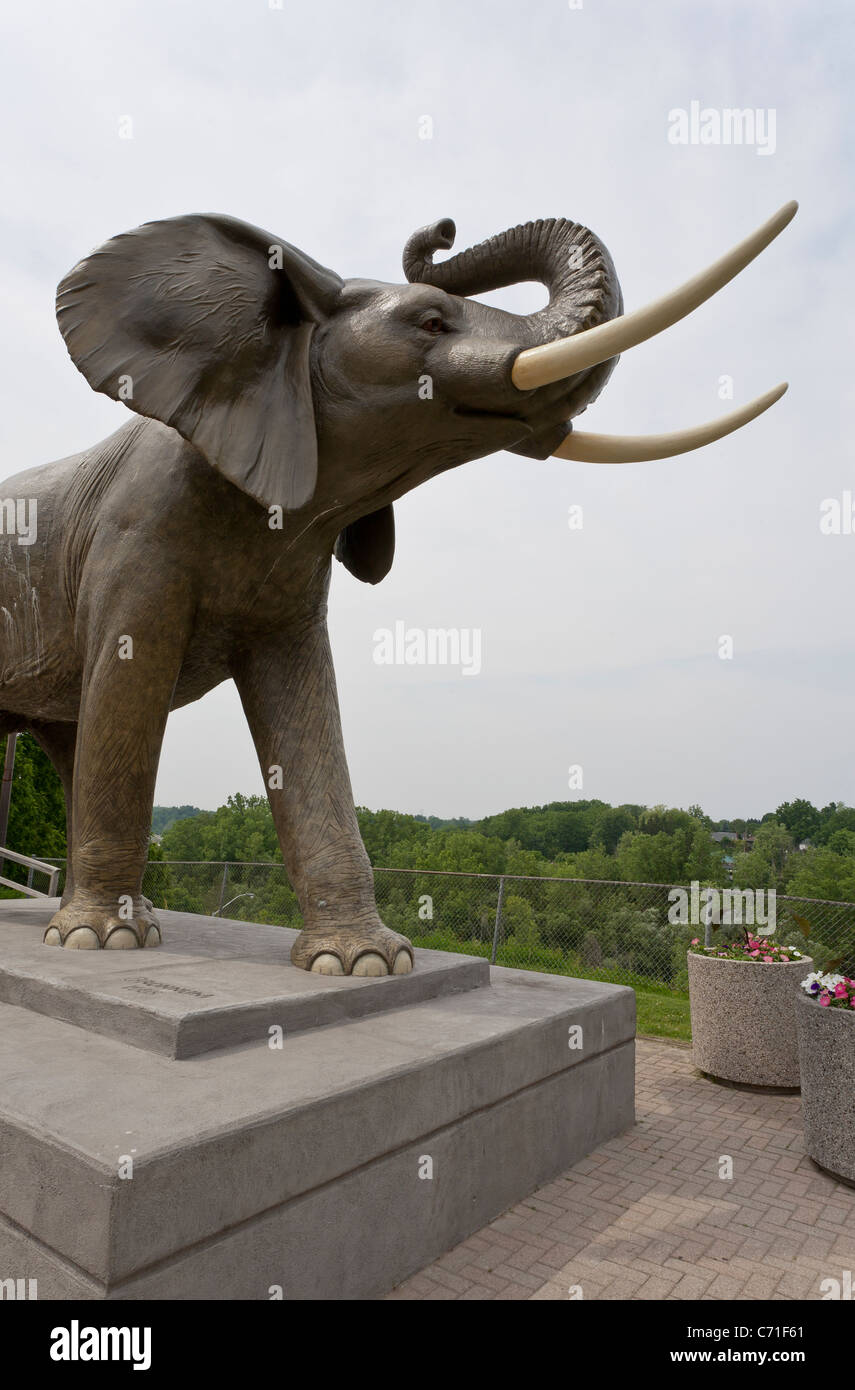 Statue of Jumbo the Elephant.. A life-sized statue of Jumbo the elephant at St Thomas. - Stock Image