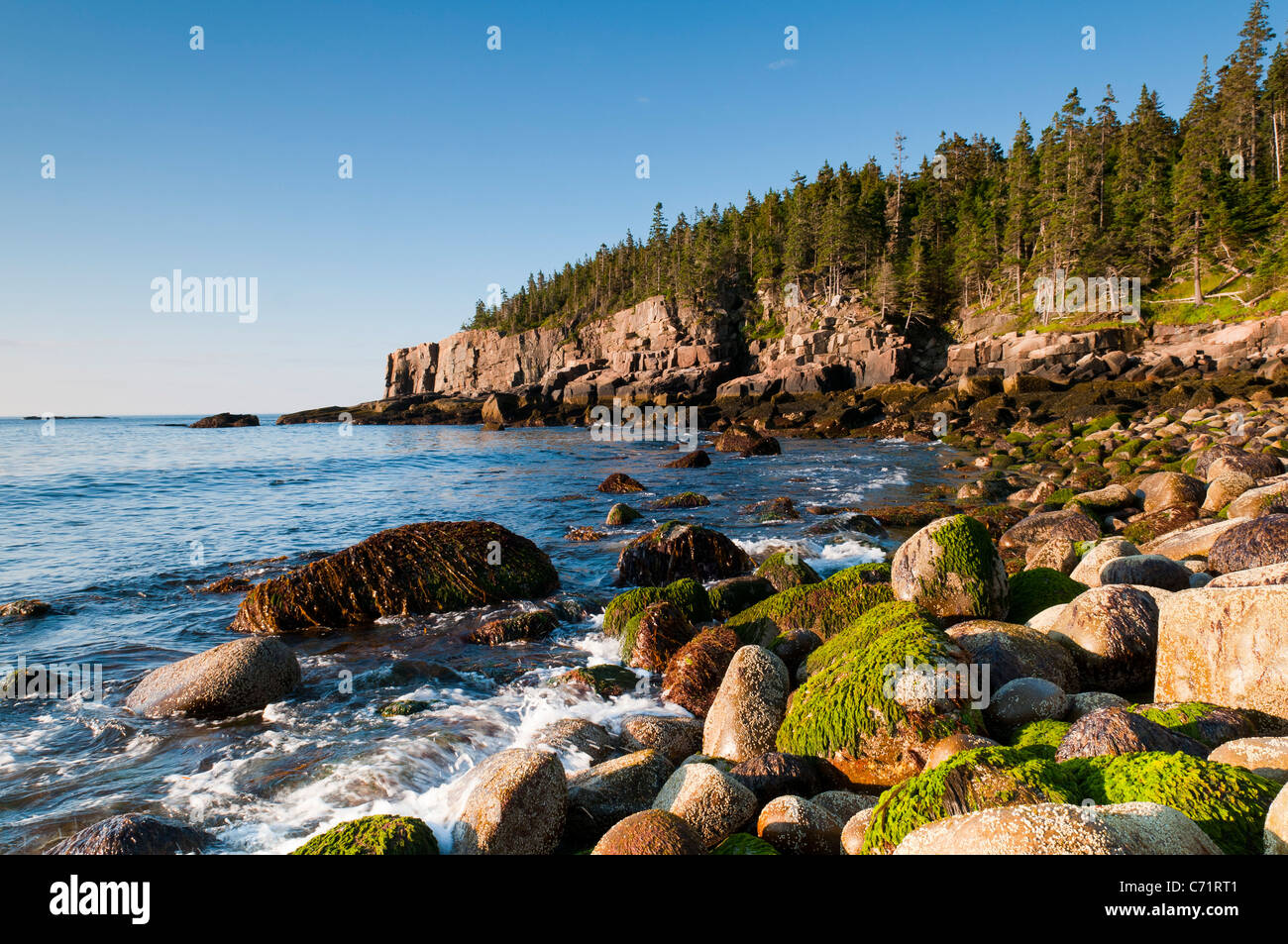Otter cliffs early morning Acadia National park Maine Stock Photo
